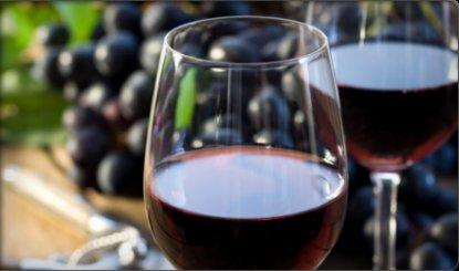 Ročník 2013 prinesie víno mnohých tvárí!